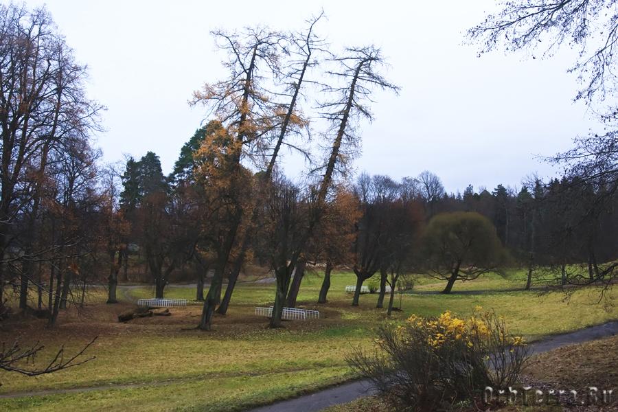 Центральная часть парка.