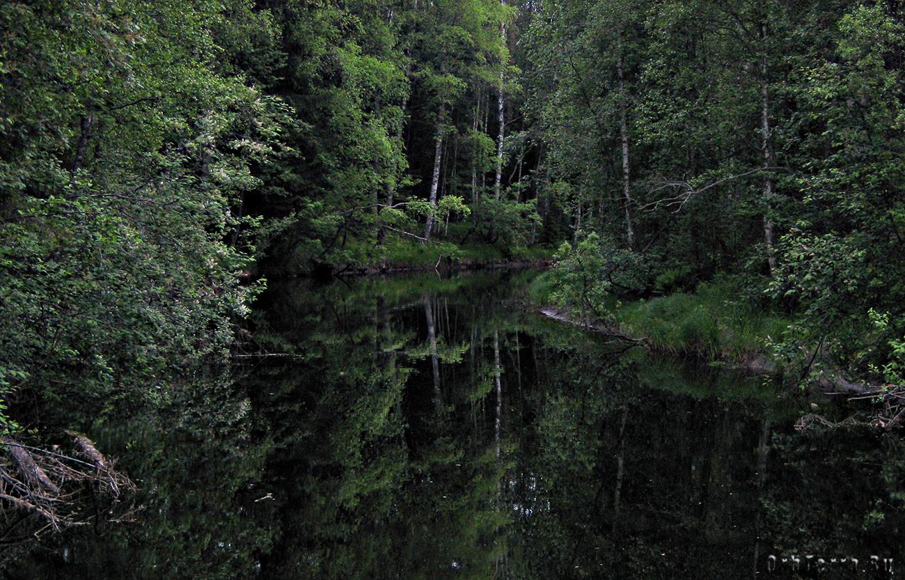 Река Кулисмайоки.