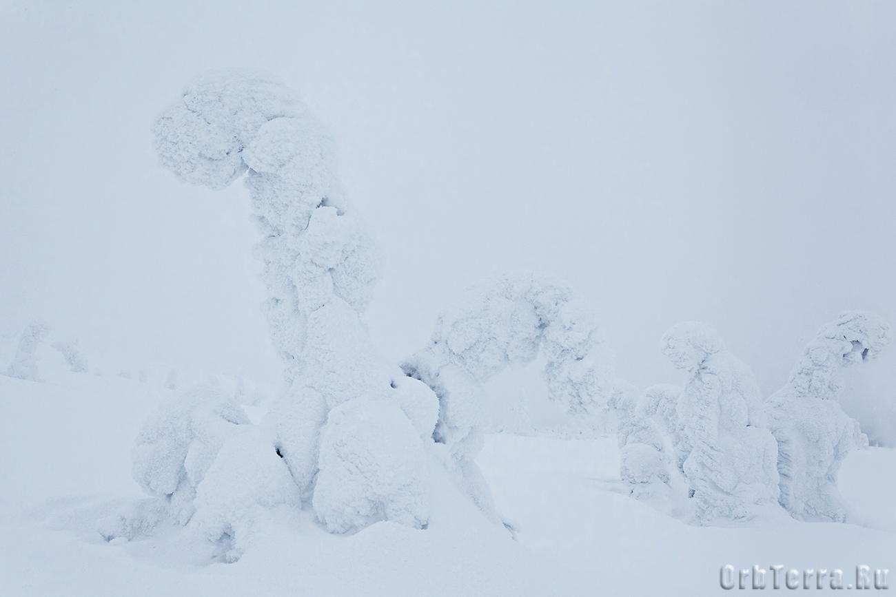 Фигуры в облачном тумане.