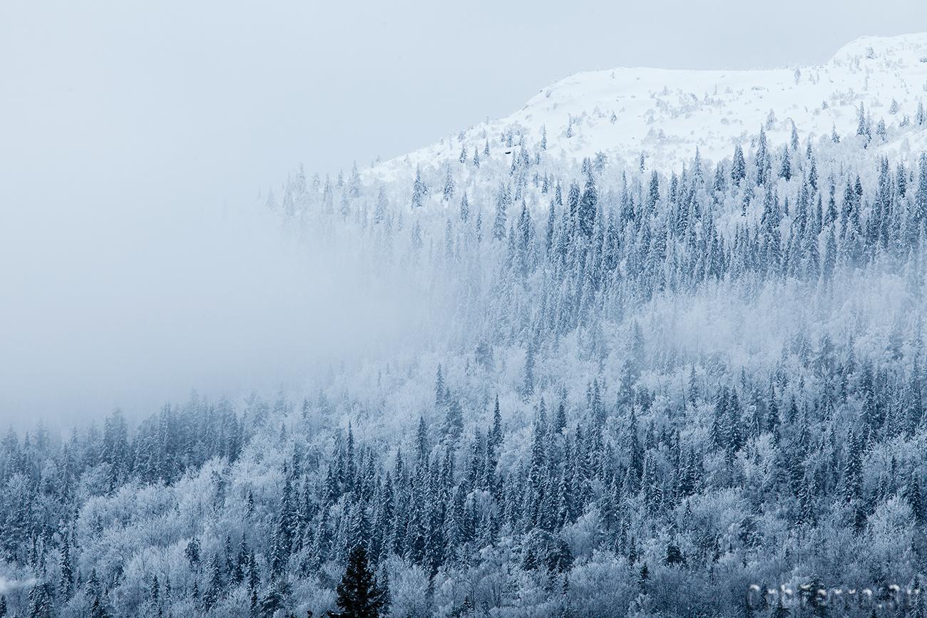 Гора Кивакка.
