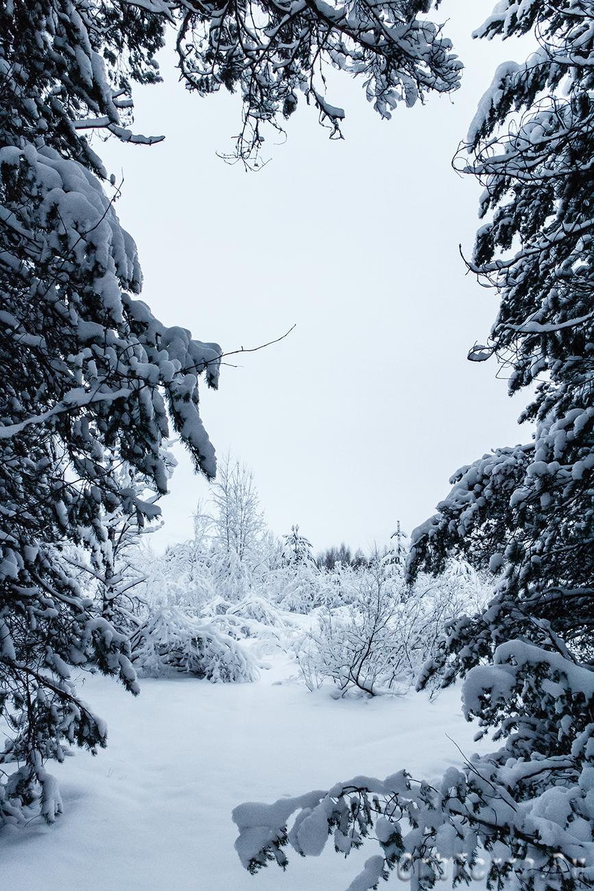 Калевала. Зимние пейзажи.