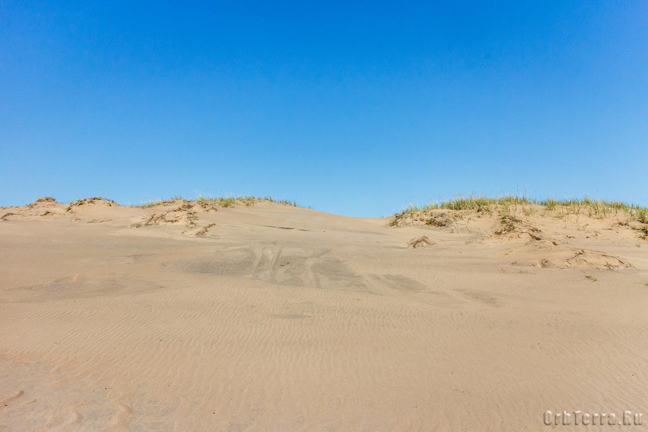 Кузоменьские пески.